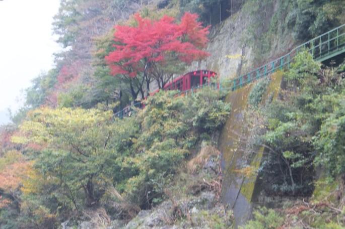 保津川 小火車